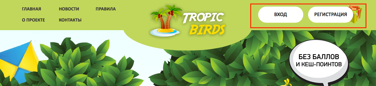 Tropic-birds.biz регистрация