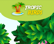Tropic-birds.biz